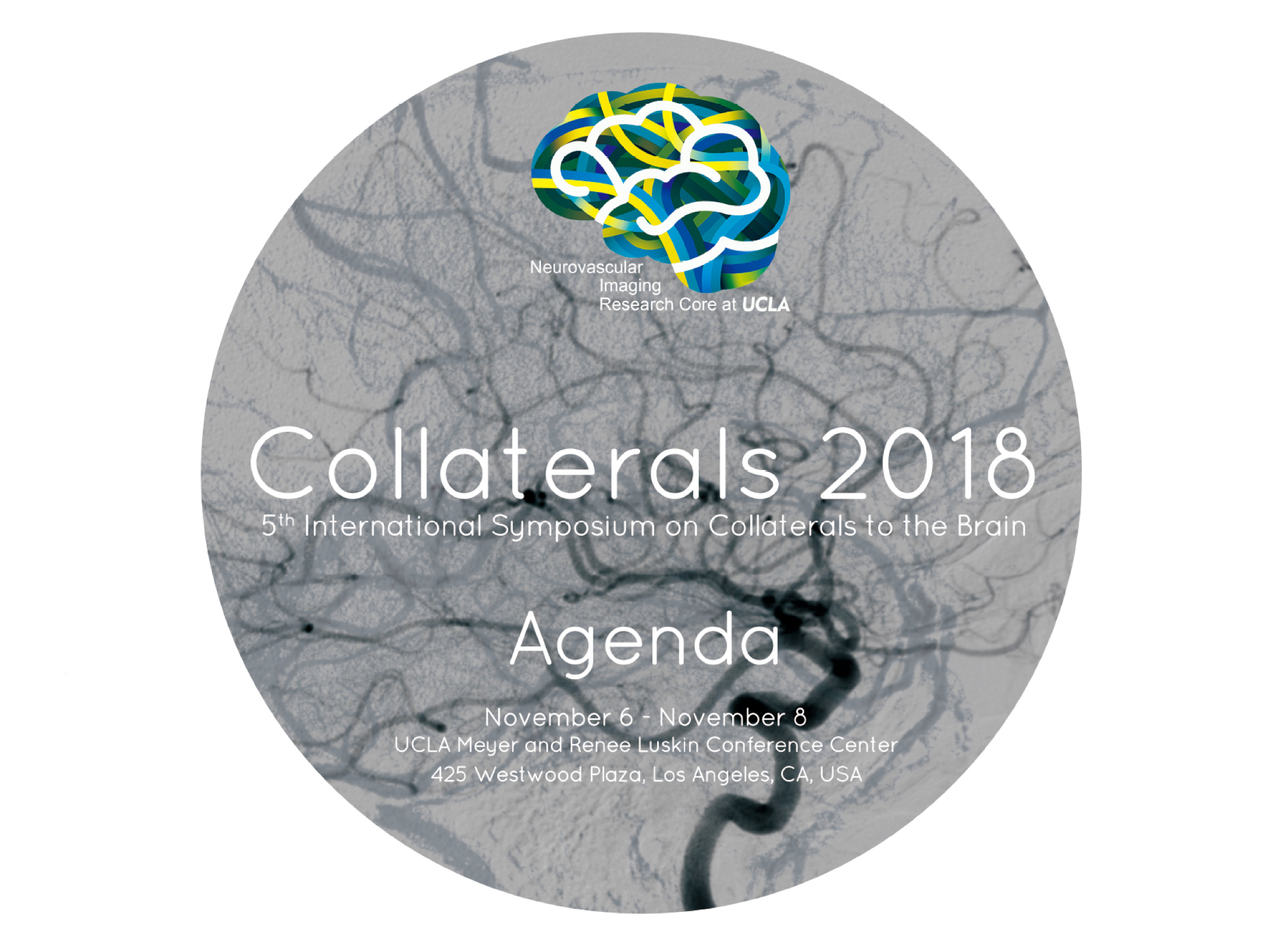 Collaterals 2019 – 6th Symposium on Collaterals to the Brain